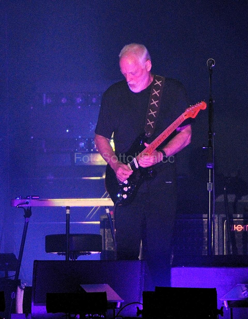 David_Gilmour (15)
