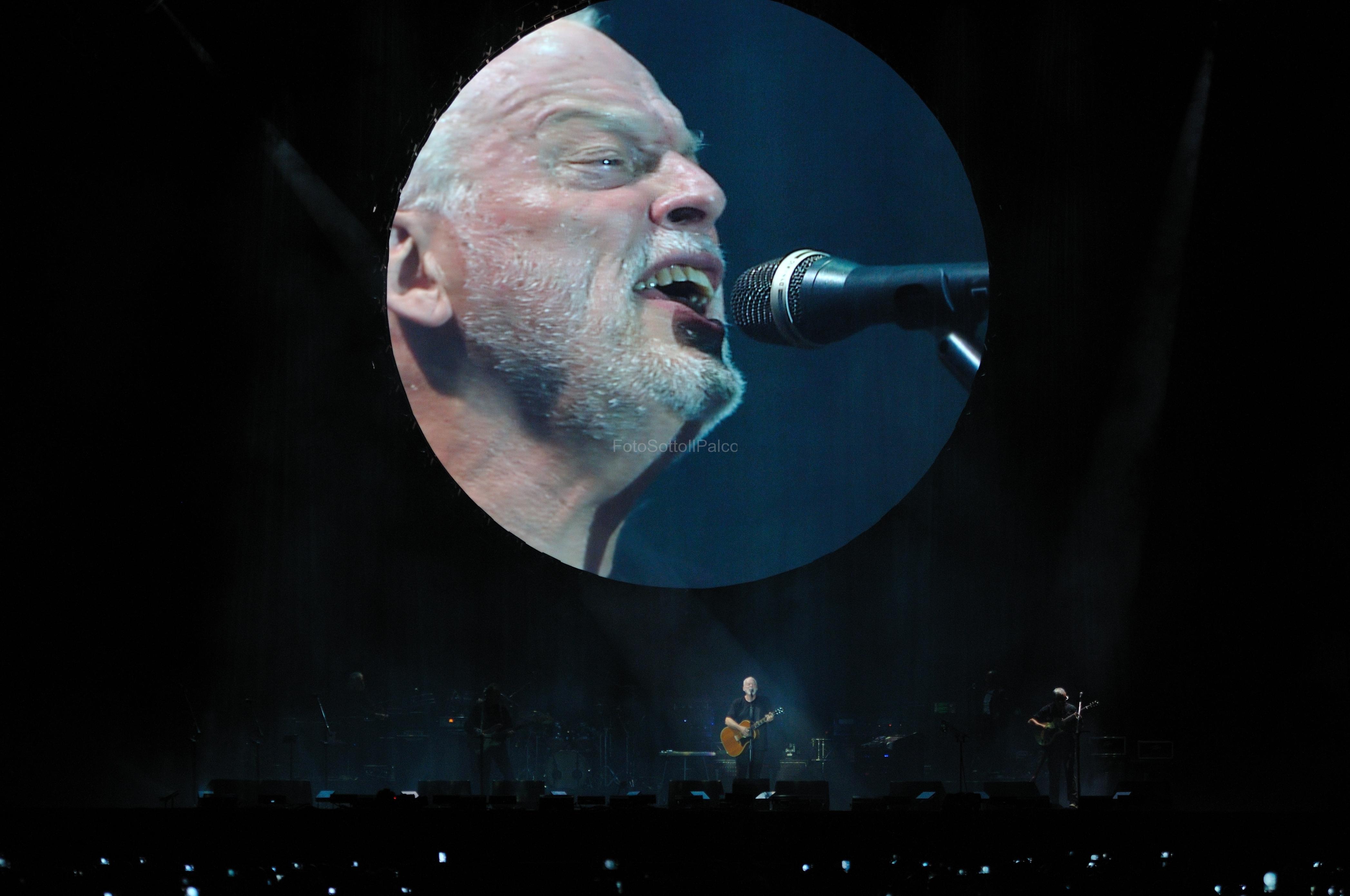 David_Gilmour (18)